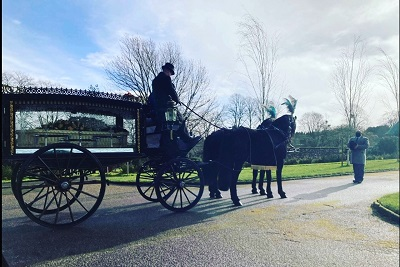 Black Horses and Hearse