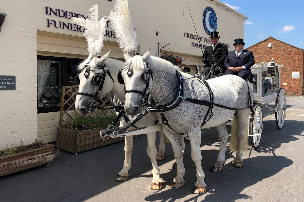 CFS_Horses Crescent Funeral Services | Our Funeral Car Fleet